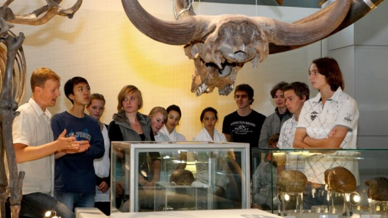 Education in Naturalis