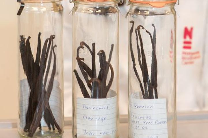 Vanilla pods analyzed in RAAK MKB project