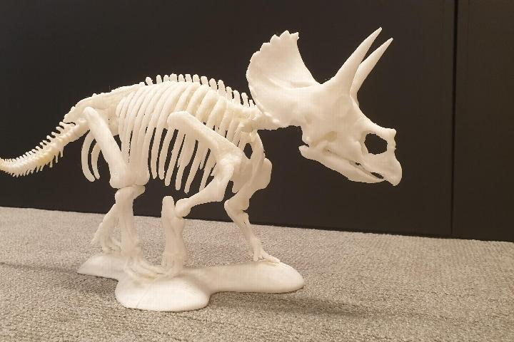 3D print Triceratops