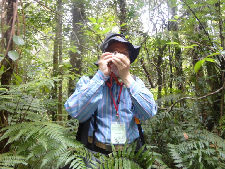 Peter Hovenkamp at work at Gunung Halimun Nature Reserve, Java