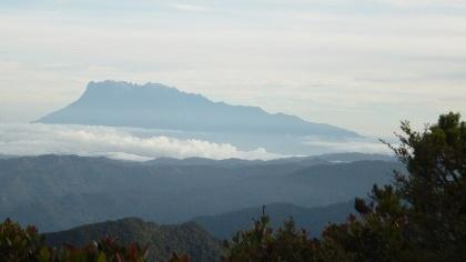Kinabalu seen from Trusmadi