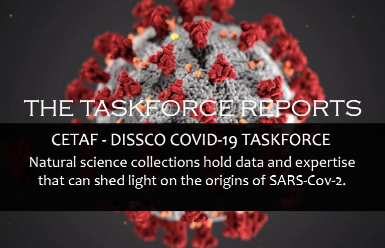 The Covid-19 Taskforce Reports